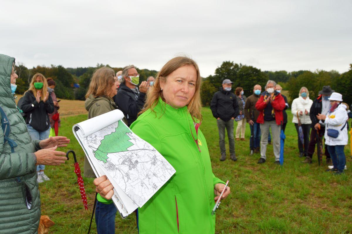 Etappensieg für den Deister – GRÜNE begrüßen Aussetzen der VW-Pläne zur Zerstörung des Landschaftsschutzgebietes